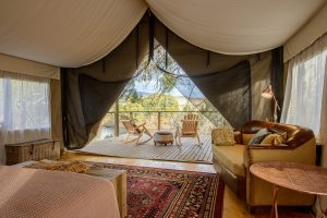 Truffle Lodge tent